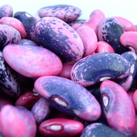 resized and cropped square image of runner beans